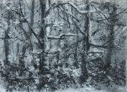 Klenová - Les II (2016), uhel na papíru